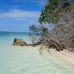 Pláž Cayo Jutia